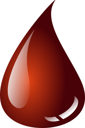 Obraz kropekk_pl z Pixabay