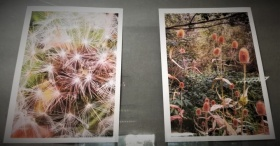 Powakacyjna wystawa fotograficzna